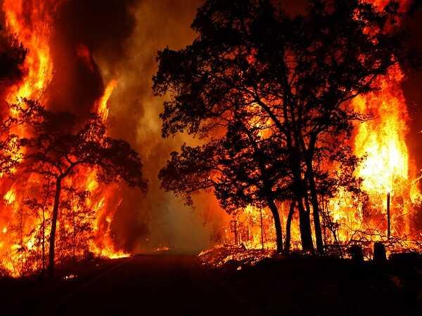 Nằm mơ thấy cháy nhà đánh xổ số chắc trúng